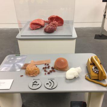 Several 3D printed latex human internal organs