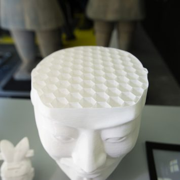 A honeycomb mesh inside the hide of the 3D printed Terracotta warrior bust